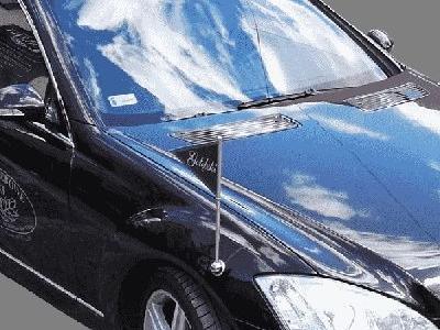 Mercedes-Benz, do przewozu zmarłych